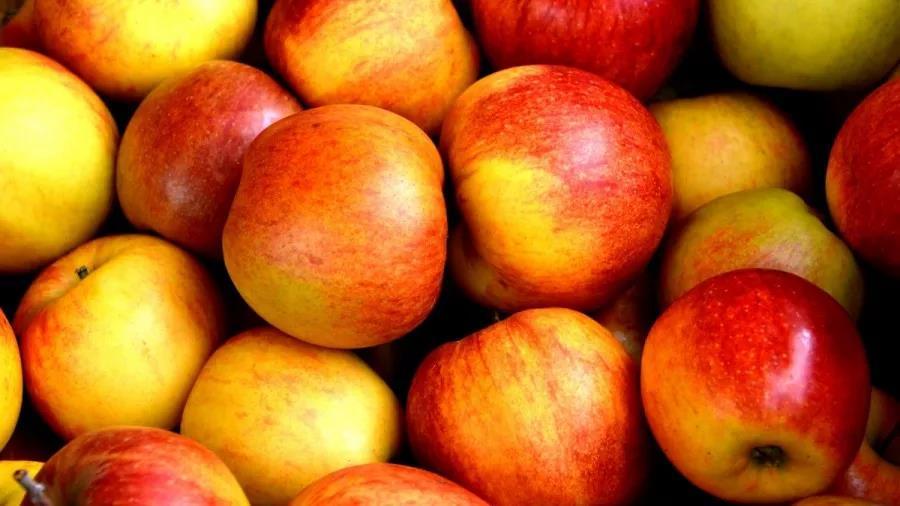 水果连锁店